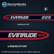 1998 1999 Evinrude Outboard decals 225 hp 225hp horsepower vindicator