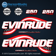 2003 2004 2005 Evinrude 250 hp decal set kit 0776290 DECAL SET, Flag Blue models